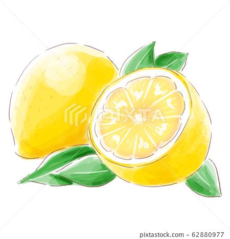 lemon_watercolor 62880977