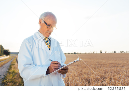 Agricultural scientist doing research in green biotech 62885885