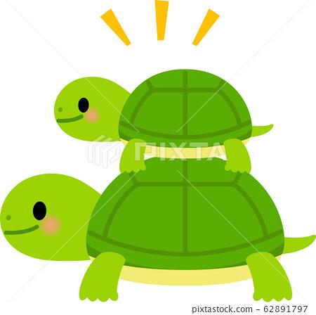 大小龜重疊 62891797