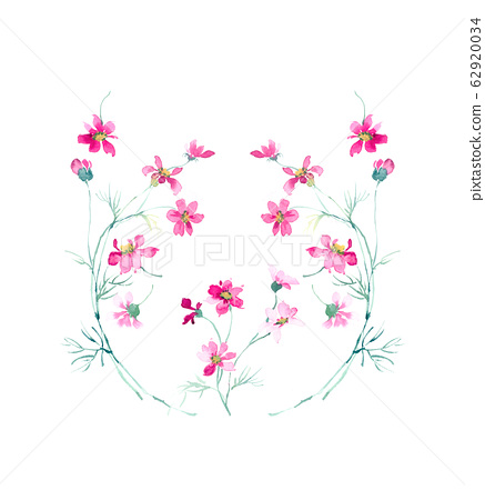 精緻的水彩手繪花卉素材 62920034