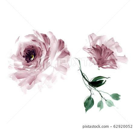精緻的水彩手繪花卉素材 62920052