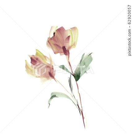 精緻的水彩手繪花卉素材 62920057