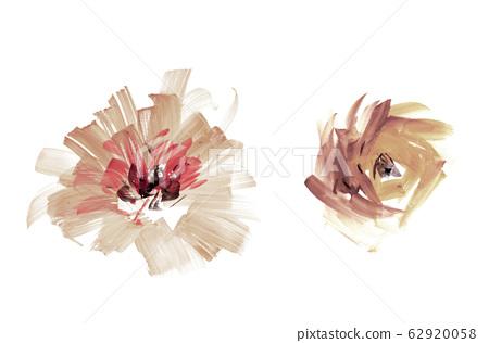 精緻的水彩手繪花卉素材 62920058