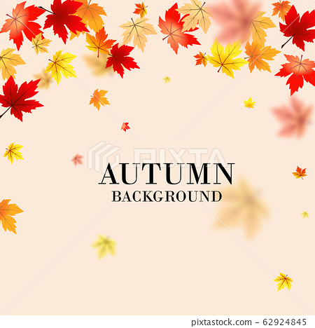 Autumn maple leaves background use for decorate, 62924845