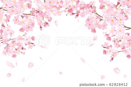 櫻花和落花瓣水彩插圖的拱形的框架 62928412