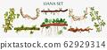 Vine Liana Transparent Set 62929314