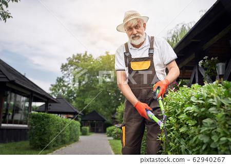 Smiling senior man cutting overgrown bushes. 62940267