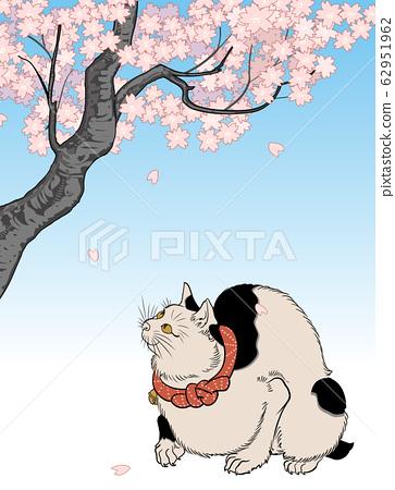벚꽃과 고양이 62951962