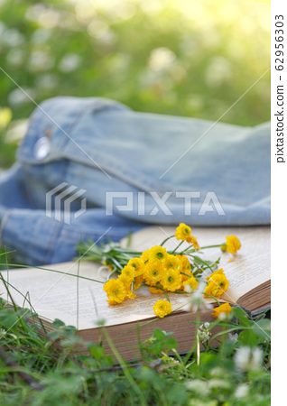 Open book, yellow flowers fanned pages on grass. 62956303