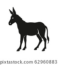 Donkey silhouette isolated vector illustration 62960883