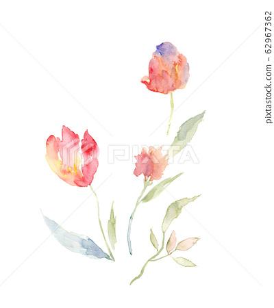 精緻的水彩花卉,優雅的水墨花 62967362