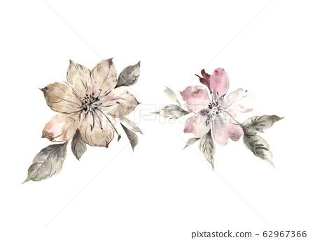 精緻的水彩花卉,優雅的水墨花 62967366