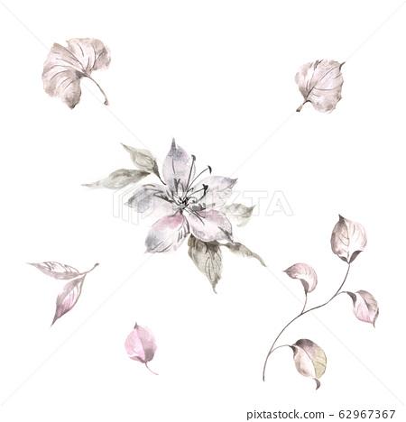 섬세한 수채화 꽃, 우아한 잉크 꽃 62967367