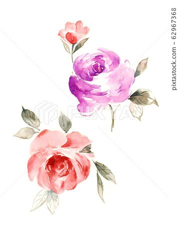 精緻的水彩花卉,優雅的水墨花 62967368
