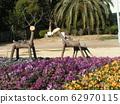 中提琴领域装饰着鹿纪念碑 62970115