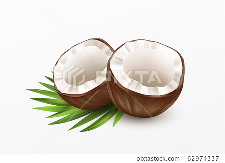 Sliced Coconut Isolated on White Background. Realistic vector illustration 62974337