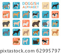 Doggish alphabet for dog lovers. Letters of the 62995797
