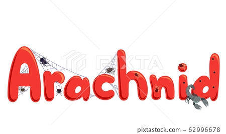 Arachnid Lettering Illustration 62996678