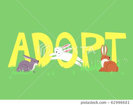 Adopt Rabbit Lettering Illustration 62996681
