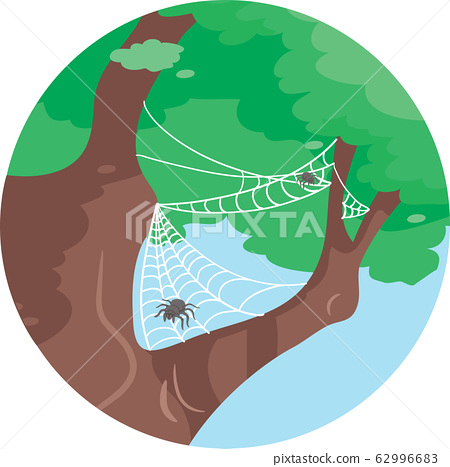 Spider On Tree Commensalism Illustration 62996683