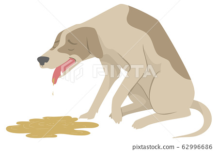 Dog Dying Vomit Illustration 62996686