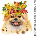 Watercolor portrait of dog pomeranian spitz with 63002376