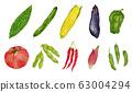 10 kinds of summer vegetables watercolor illustration 63004294