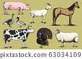 Farm animals. Pig Goat Horse Sheep Cattle Cow Turkey Goose and Duck. Set of domesticated animals 63034109