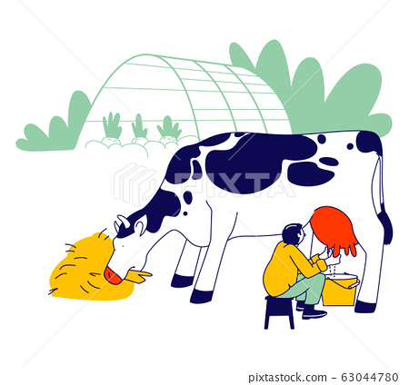 Young Milkmaid in Uniform Sitting on Chair and Milking Cow into Bucket. Milk and Dairy Farmer Agriculture Products 63044780