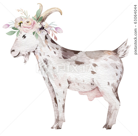 Farms animal isolated set. Cute domestic farm pets watercolor illustration. Goat and duck baby cartoon drawing. 63064044