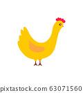 Cute cartoon chicken vector illustration. Hen isolated 63071560
