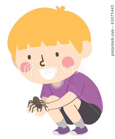 Kid Boy Hold Tarantula Illustration 63075445