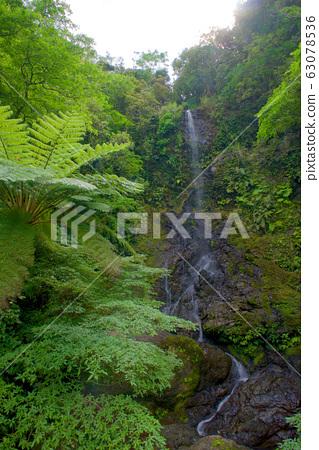 Kairi Falls (Amami Islands Kakeroma Island) 63078536