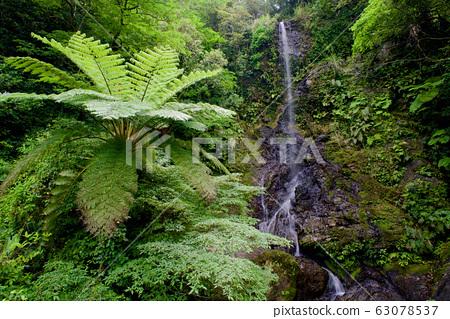 Kairi Falls (Amami Islands Kakeroma Island) 63078537