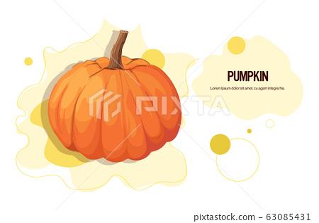 fresh pumpkin sticker tasty vegetable icon healthy food concept horizontal copy space 63085431