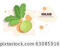 fresh kohlrabi sticker tasty vegetable icon healthy food concept horizontal copy space 63085916