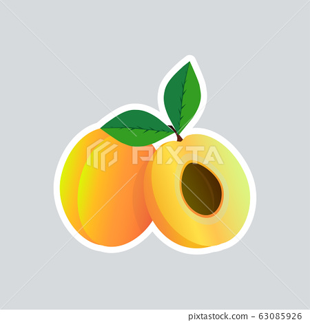 fresh juicy apricot sticker tasty ripe fruit icon healthy food concept 63085926