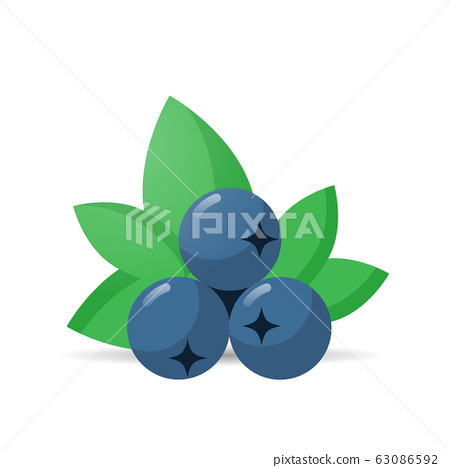 fresh juicy blueberry icon tasty ripe fruit isolated on white background healthy food concept 63086592