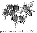 Honey Bumble Bee and Honeycomb Vintage Drawing 63089513