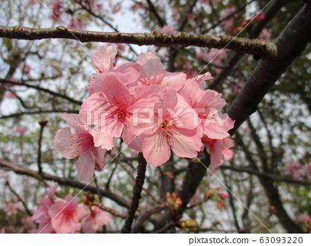 新竹市街景海濱 63093220