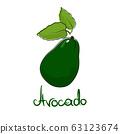 Avocado isolated on white background 63123674