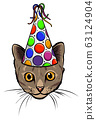 Hand Drawn Illustration of Cat in Party Hat, Heart shaped Glasses and Big Candy. 63124904