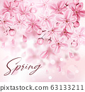 Spring background with pink cherry flowers 63133211