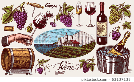 Vineyard and Wine Set. Ice bucket, Corkscrew Cork Grapes, wooden barrel. Sparkling champagne, bottle 63137135