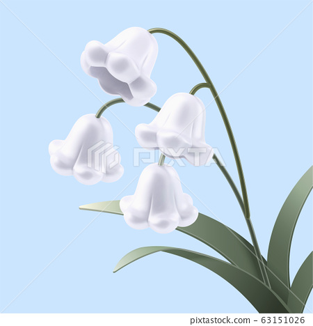 Lovely white lily of the valley 63151026