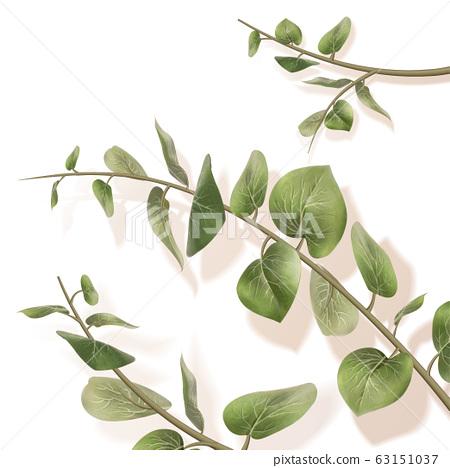 Elegant green leaves on white 63151037