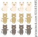 猫图姿势差异集 63163485