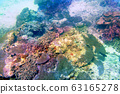 바다 사진 63165278