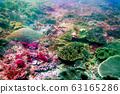 바다 사진 63165286