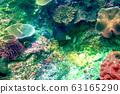 바다 사진 63165290